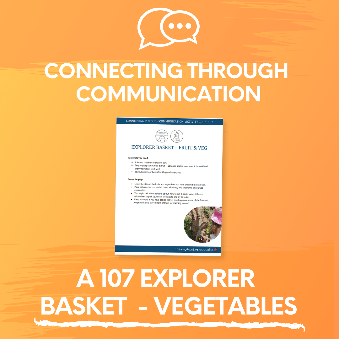 A 107 Explorer Basket - Vegetables