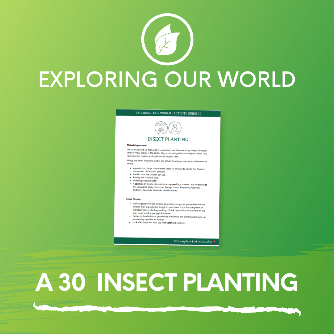 A 30 Insect Planting